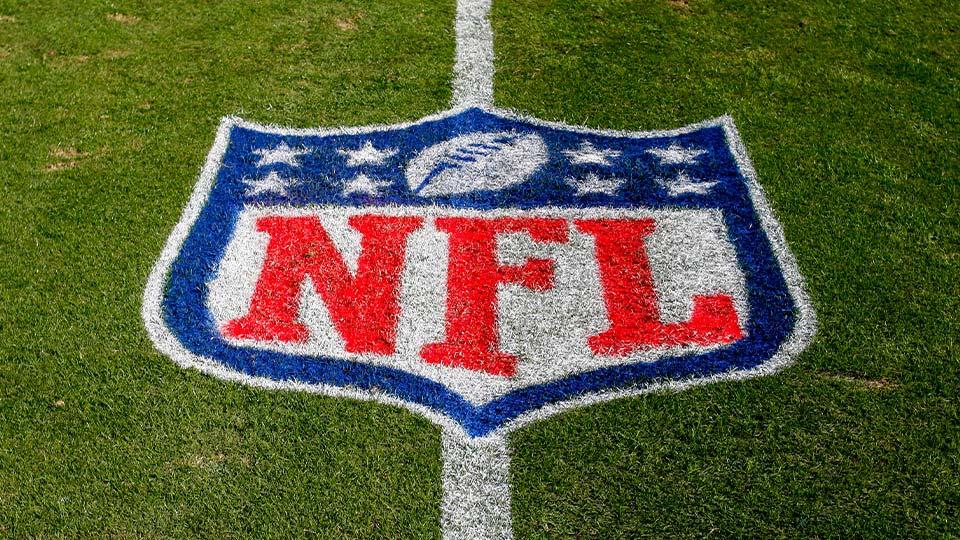 NFL logo, Bank of American Stadium