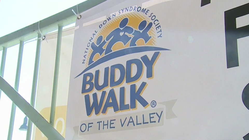 Buddy Walk of the Valley