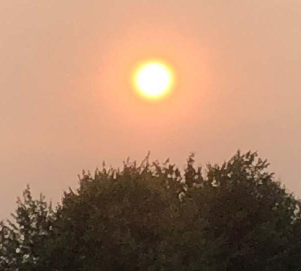 Hazy sun, Hermitage, Pennsylvania
