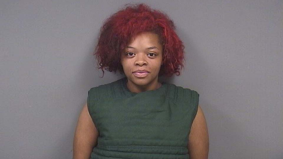 Lily Johnson, 24, charged with failure to comply and two misdemeanor charges of child endangering in Youngstown.