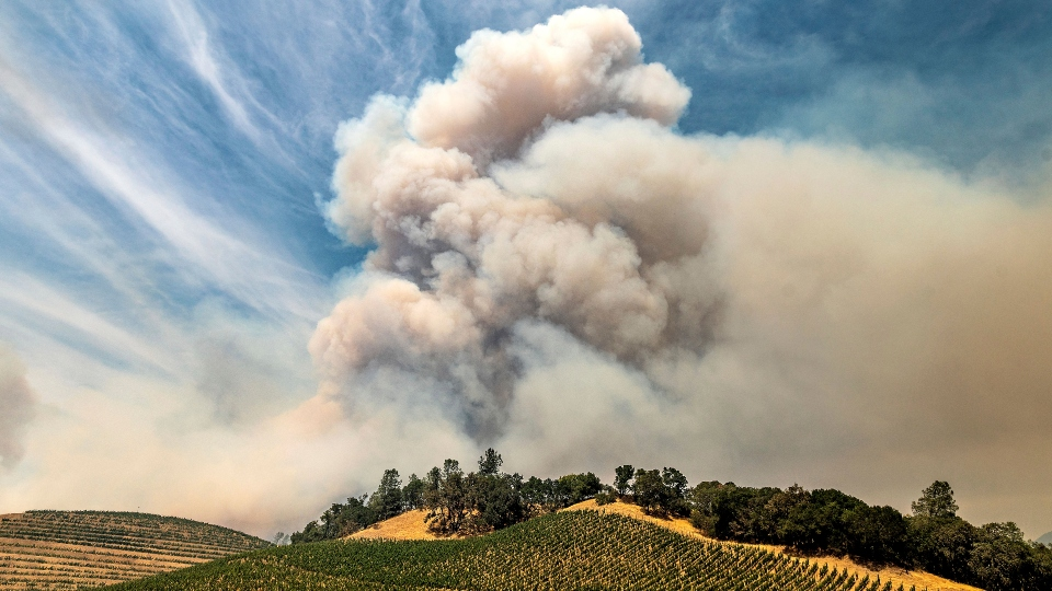 Napa County, California wine, wildfires