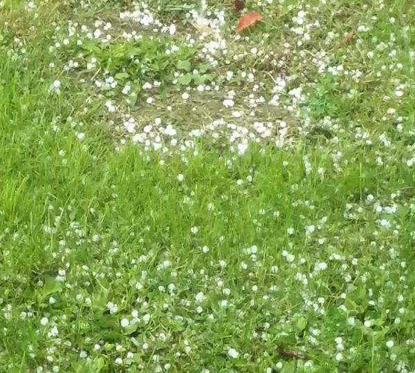Hail in Greenville
