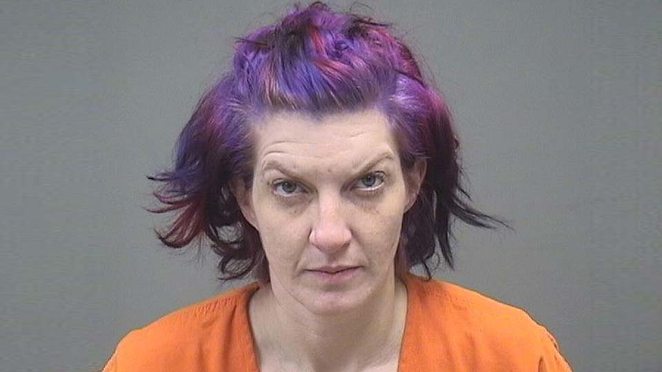Leanne Comstock, charged with distribution of methamphetamine in Warren.