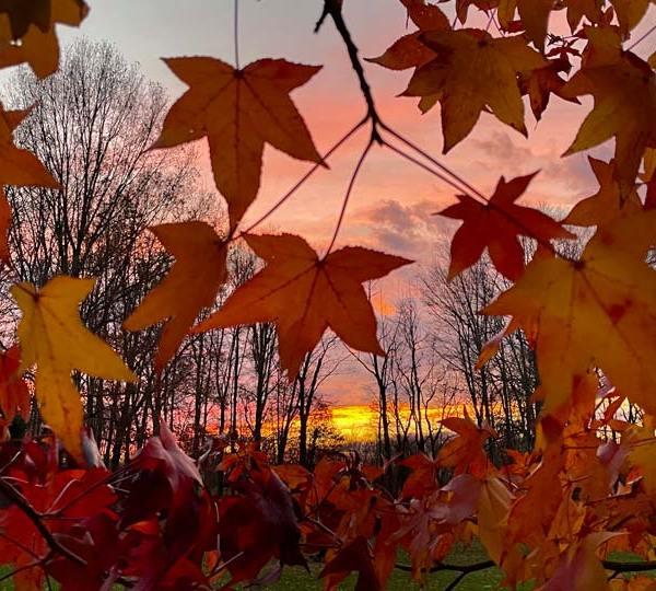 Mercer, PA sunset by TC