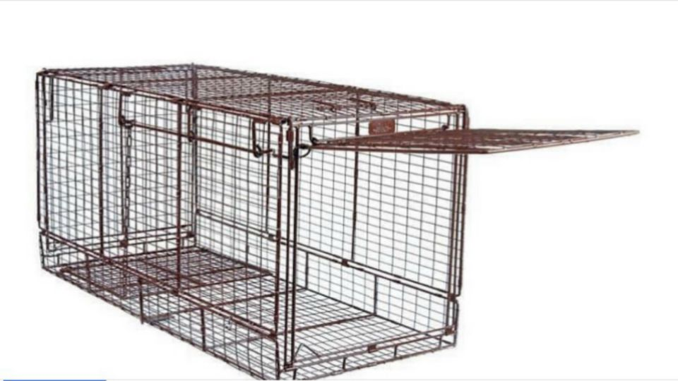 The Mahoning County Dog Warden's office is filing a theft report after a dog trap was taken.