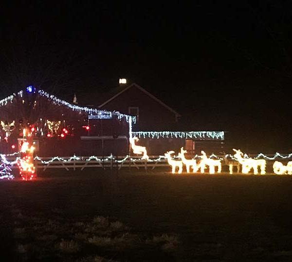 Farmdale Christmas Lights