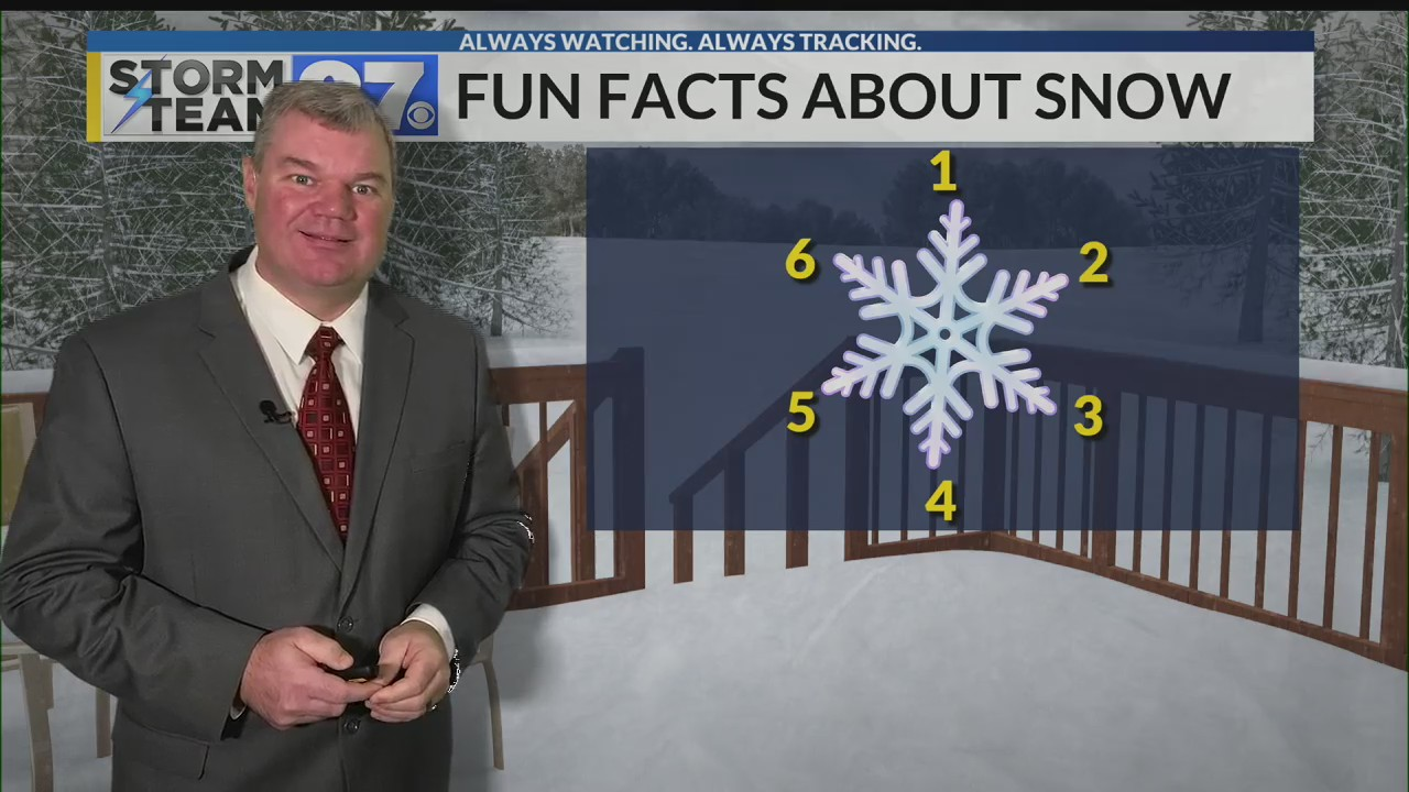 A few fun facts about snowflakes