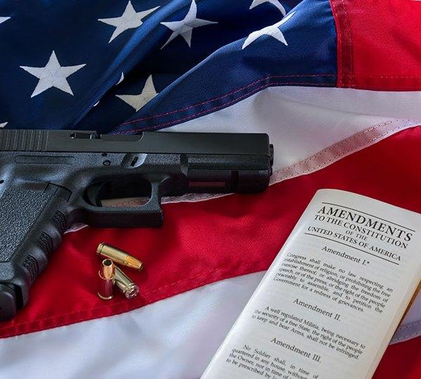 gun second amendment