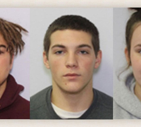 Two people are in custody and two people are wanted in connection to a burglary in Niles.