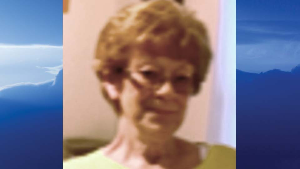 Nancy Lee Caravella, New Castle, Pennsylvania - obit