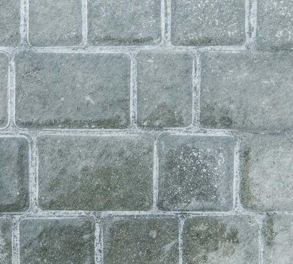 An ice-covered brick walkway.
