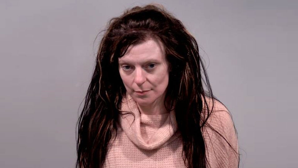 Megan Clifton, charged with harassment, resisting arrest and intimidation in Vienna.