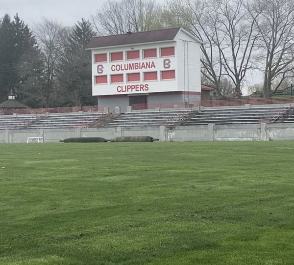 Committee members are getting to work to raise money for new stands and a new track at Columbiana's stadium.