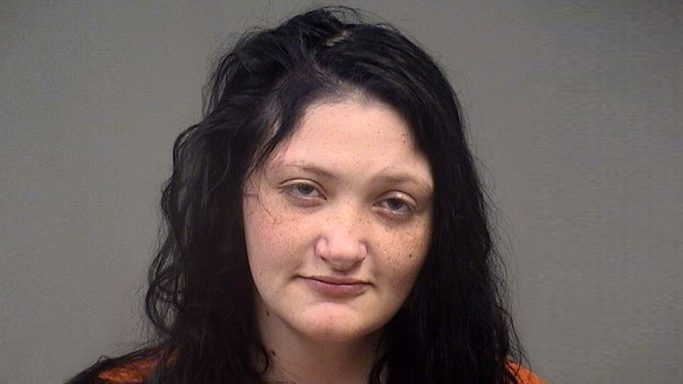 Jana Cox, felonious assault, improperly discharging firearm at or into habitation, obstructing official business, Youngstown