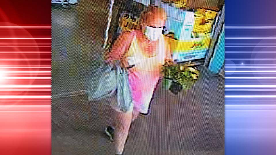 Austintown Police are looking to identify the vehicle and driver of a hit skip accident that happened at the Austintown Walmart last week.