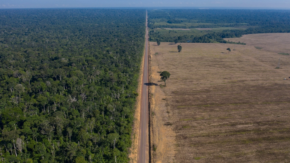 In this Nov. 25, 2019 file photo, highway BR-163 stretches between the Tapajos National Forest, left, and a soy field in Belterra, Para state, Brazil.