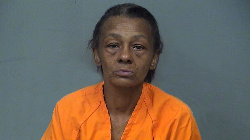 Marsha Lewis-Smith faces charges of domestic violence and discharging a firearm within city limits after she was arrested about 12:55 a.m. at her home in Youngstown.