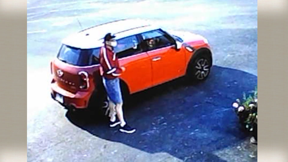 Austintown police, person of interest in retail theft