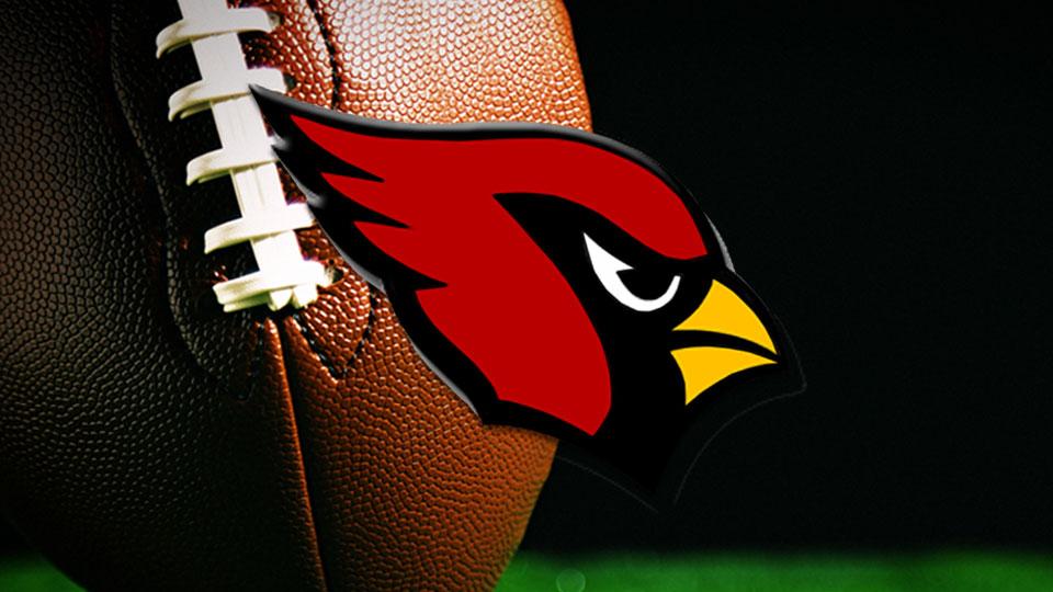 Canfield Cardinals, High School Football