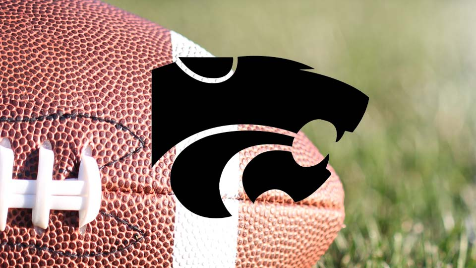 Edison Wildcats High School Football