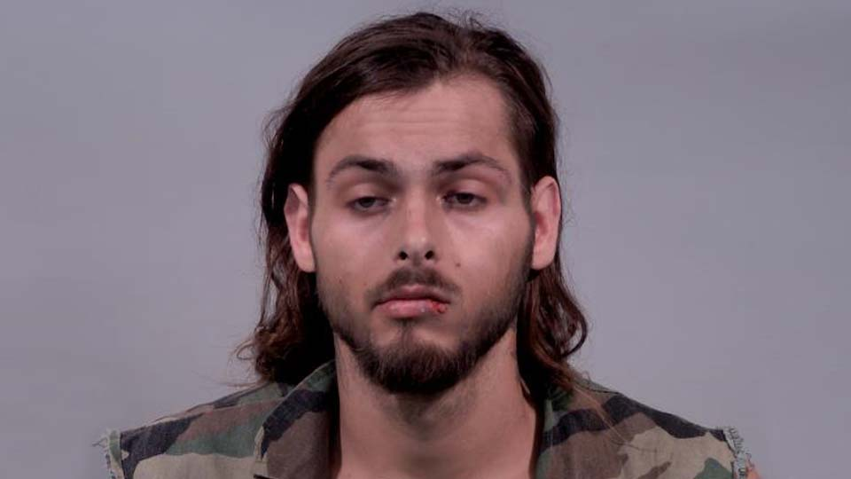 Gerontios Ginnis, charged with felonious assault and petty theft in Warren