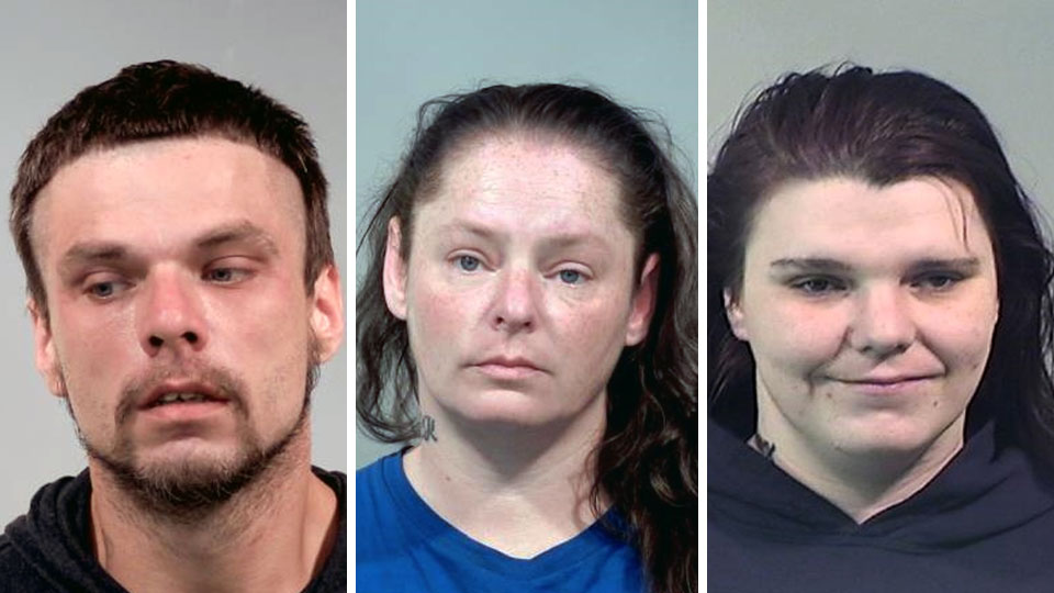 Joseph Cales, Penny Koballa, Shannon Cales, all charged with assault in Newton Falls