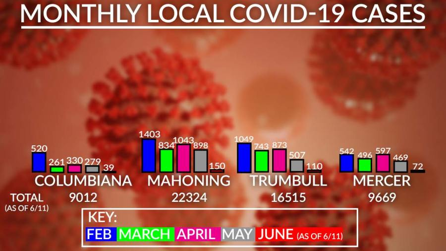 Monthly Local Covid-19 Cases Chart, June 11