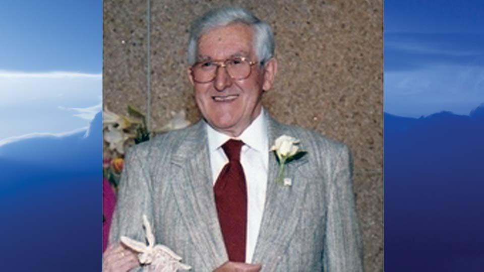 Raymond Harrison Simmons, Braceville, Ohio - obit