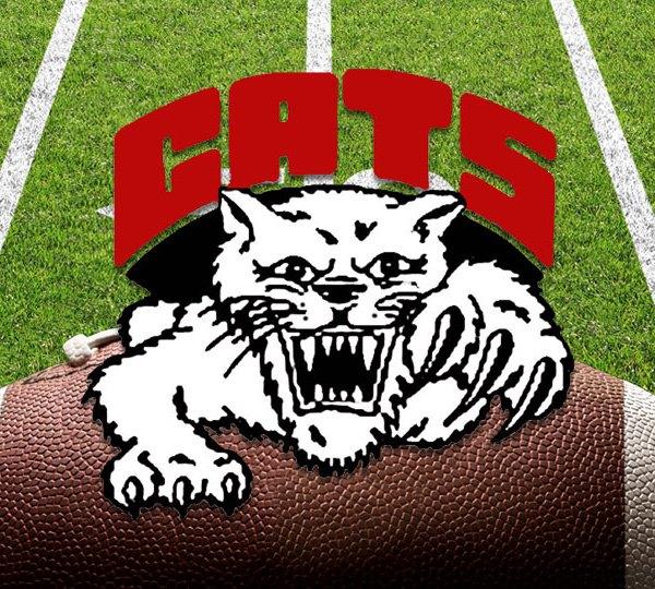 Struthers Wildcats, High School Football
