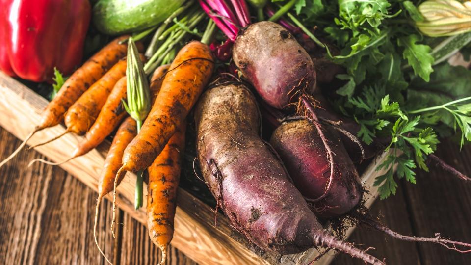 Vegetables, carrots, peppers, gardening
