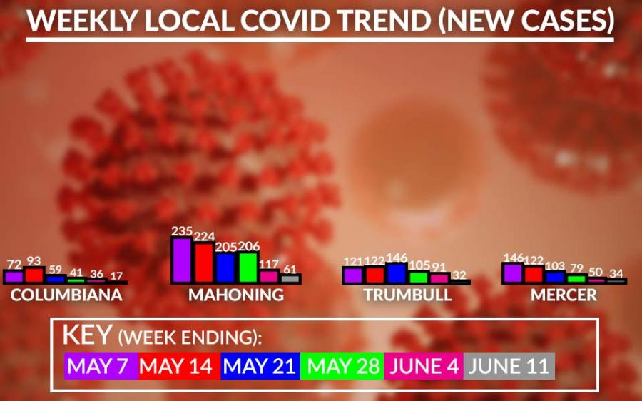 Weekly Local Covid-19 Cases Chart, June 11