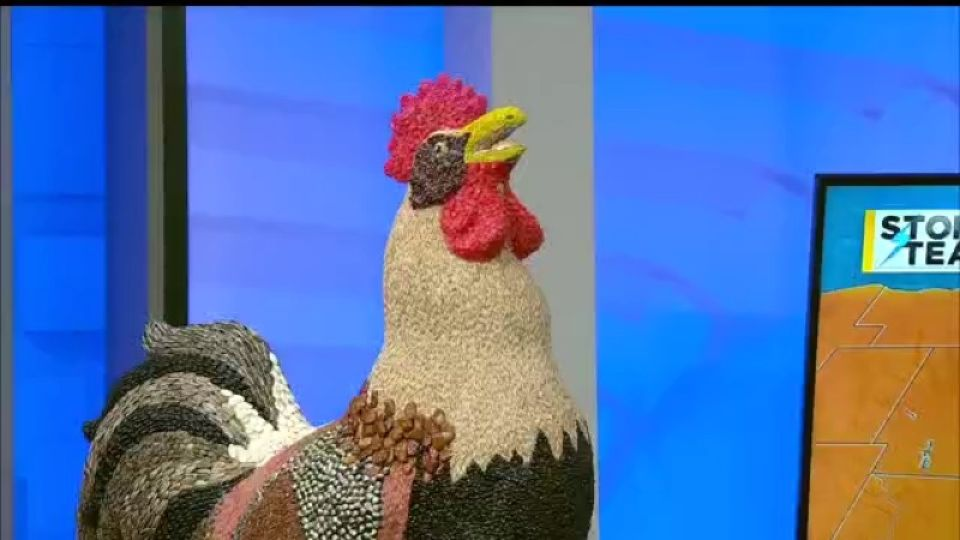 27 Storm Team Meteorologist Paul Wetz introduced has a new friend joining him in the WKBN 27 First News studios.