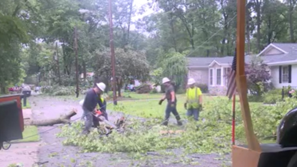 Niles City Council voted 4-3 against even considering a temporary ordinance that would use city resources to finish tree limb cleanup from front yards.