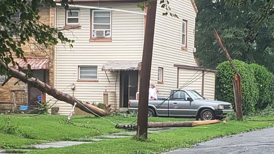 Campbell pole and trees down