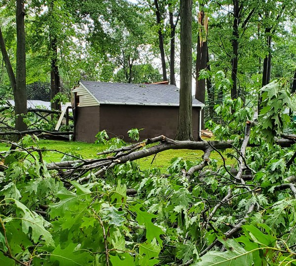 Niles tree and shed damage