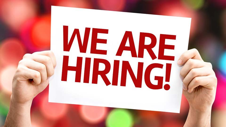 Jobs, Hiring, Employment
