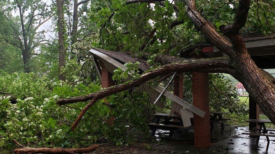 Roosevelt Park pavillion damage