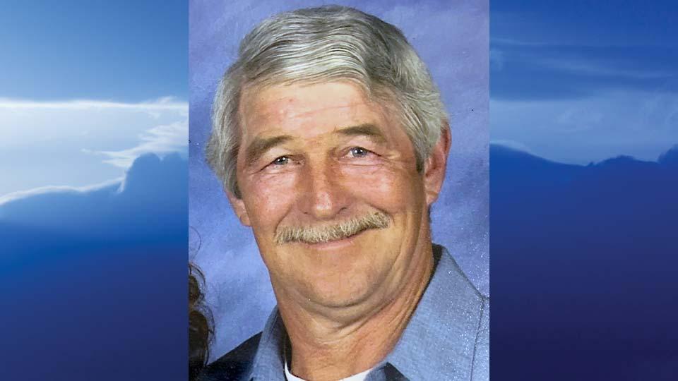 Ronald E. Young, North Beaver Township, PA - obit