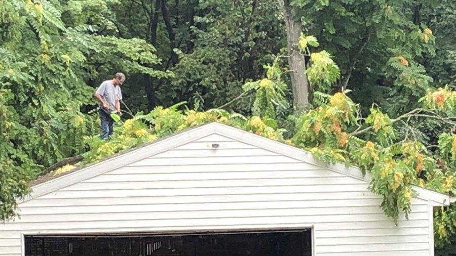 Tree on garage, Mineral Ridge, Ohio
