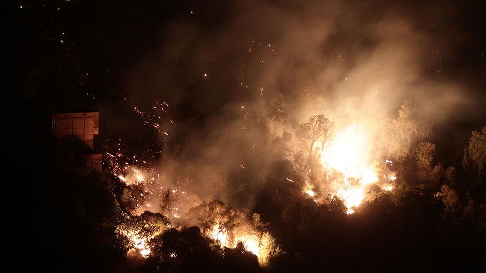 A forest burns near the village of Larbaa Nath Irathen, neat Tizi Ouzou, in the mountainous Kabyle region, 100 kilometers (60 miles) east of Algeria's capital of Algiers, Wednesday, Aug.11, 2021