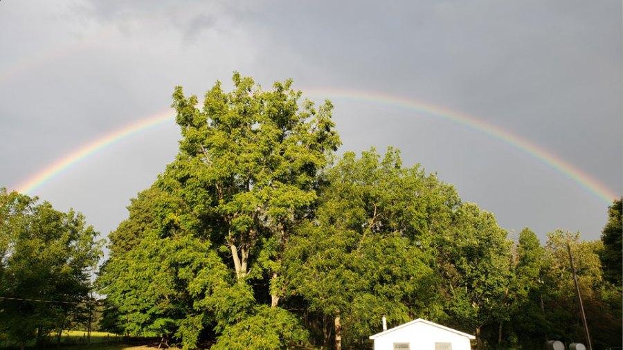 Salem evening rainbow, Tim