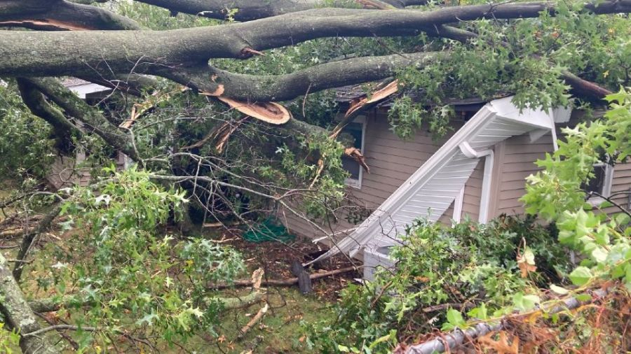 A tree fell on a house in Salem