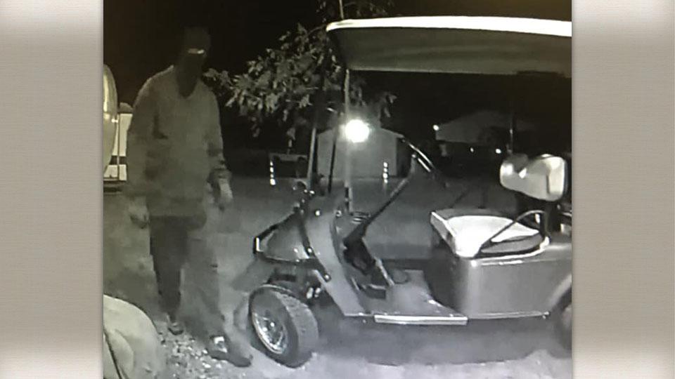 Vienna Township golf cart theft