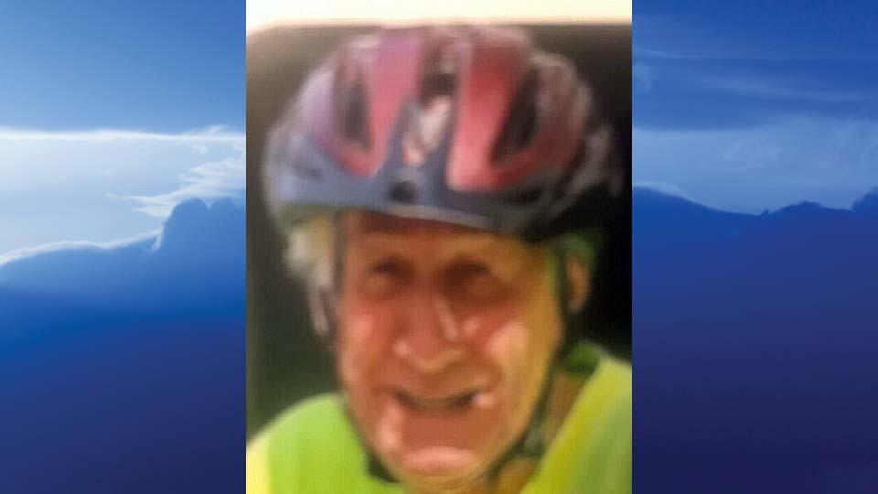"Carl L. ""Pete"" Shingledecker, Youngstown, Ohio-obit"